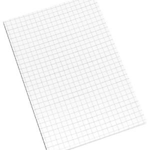 INFO Graph Sticky Notes 100 X 150 MM